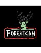 Forestcam