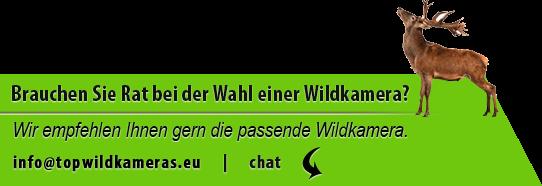Brauchen Sie Rat bei der Wahl einer Wildkamera